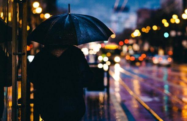 Рабочая неделя в Петербурге начнется с дождей и гроз
