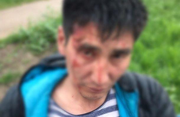Подростки избили прохожего уметро «Проспект Просвещения»