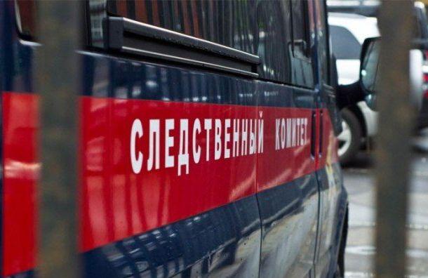 Житель Ленобласти «оголил» участок границы России с Эстонией
