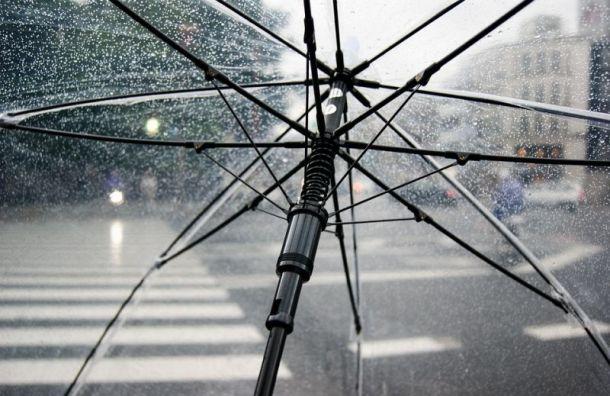 Кратковременные дожди обещают петербуржцам впонедельник
