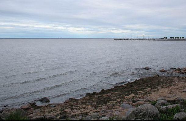 Катер сдвумя пассажирами врезался вкаменный мол наФинском заливе