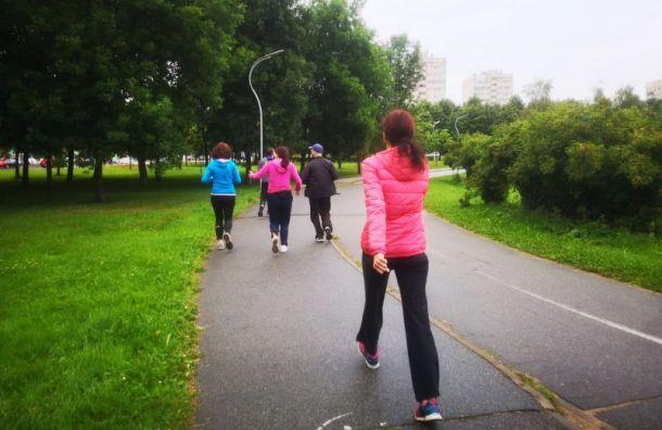 Защитники Муринского парка выйдут нановый митинг 13августа