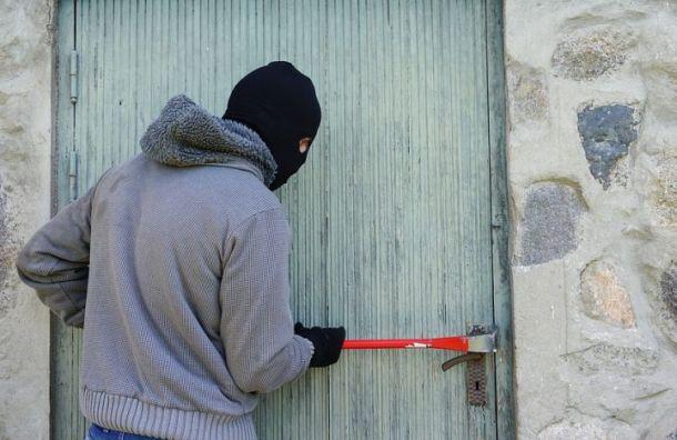Похитителей бытовой техники задержали вЛенобласти