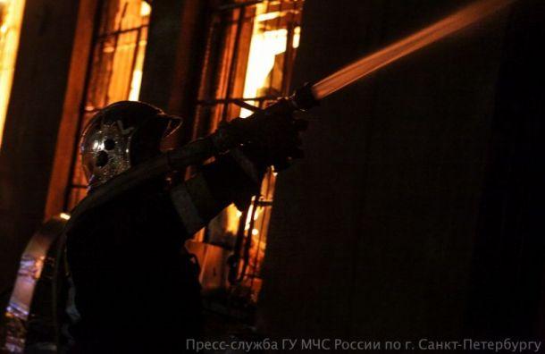 Сильный пожар объял еще один склад вНевском районе Петербурга