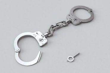 Суд арестовал второго болельщика, обвиняемого визбиении омоновца