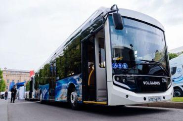 Петербург закупит 200 новых автобусов кчемпионату Европы