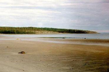 Туристы изПетербурга пропали вБелом море