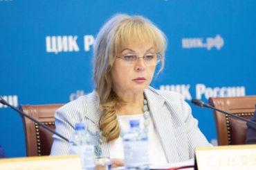 Рабочая группа ЦИК приедет в Петербург по вопросу экстерриториальных участков