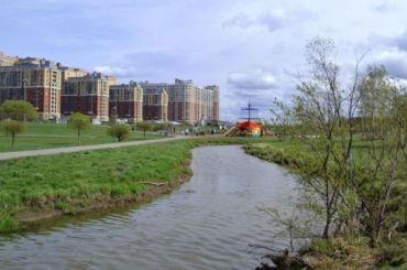 Река Оккервиль приобрела мутно-белесый окрас