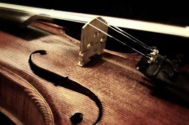 Скрипку затри тысячи евро украли усына концертмейстера