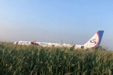 Самолет «Уральских авиалиний» уберут споля нераньше 19августа