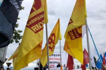 Петербургские эсеры требуют отказаться от«дачных» участков