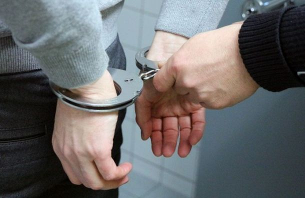 Подозреваемого вубийстве Елены Григорьевой арестовали