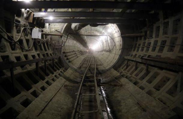 Изменение проекта депо «Красносельское» обойдется в60 млн рублей