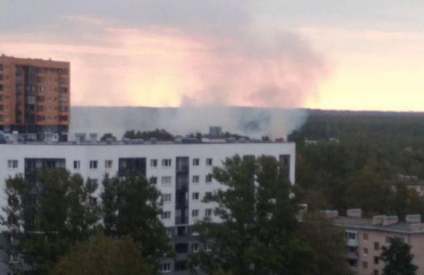 Ущерб отпожара наРжевке будут подсчитывать десятки фирм