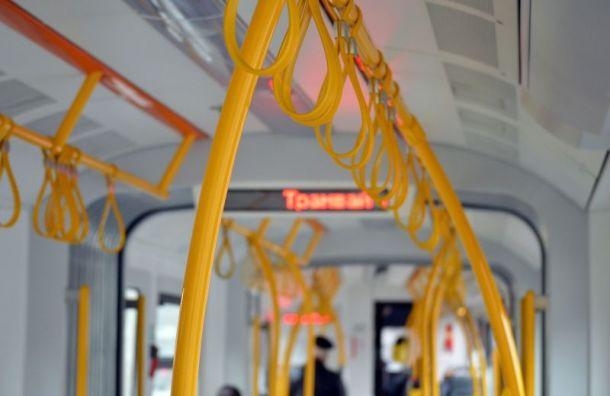 Автобусы главные виновники ДТП вПетербурге