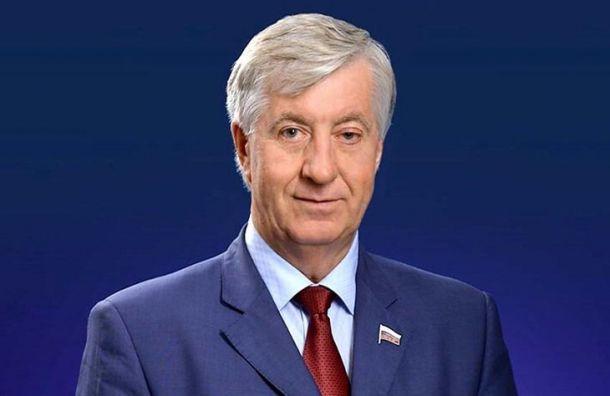 Удостоверение депутата Госдумы пропало вПетербурге