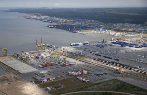 Портовый терминал вУсть-Луге заработает наполную мощность к2024 году