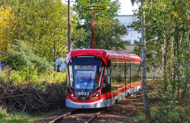 Петербуржцы придумывают имя новому трамваю отКупчина доСлавянки
