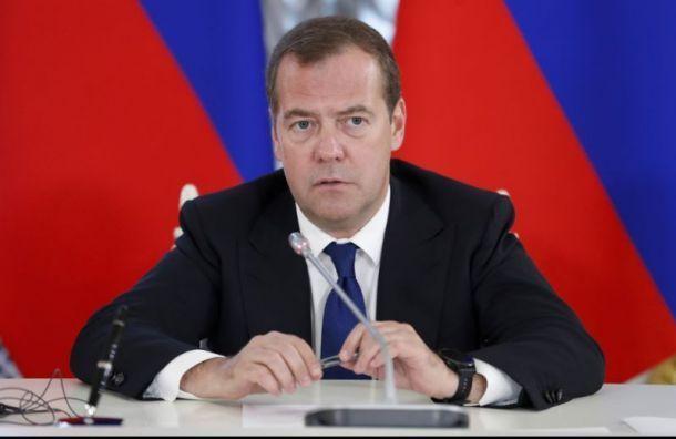 Вишневский: из-за приезда Медведева петербуржцам закрыли Летний сад