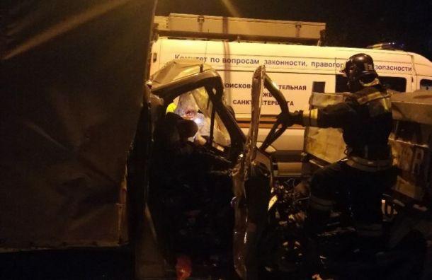 Водитель «Газели» разбился насмерть вДТП наКубинской улице