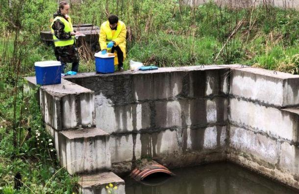 Арбитраж рассмотрит иск коператору Пулкова озагрязнении реки Новой