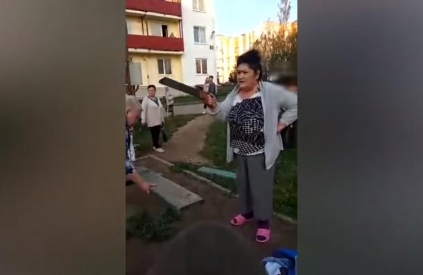 Пенсионерки изЛенобласти спилили качели из-за шумных детей