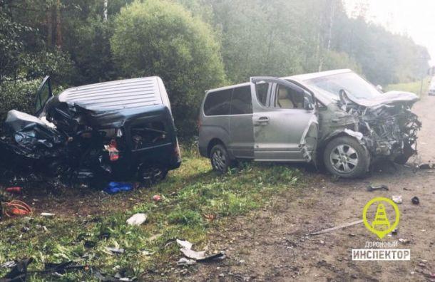 В ДТП с тремя микроавтобусами на Киевском шоссе погибли два человека