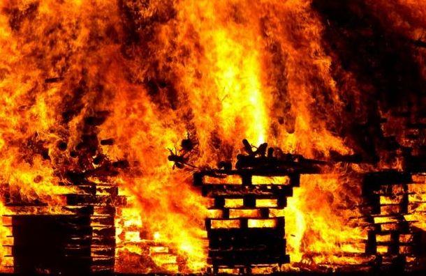 Все животные погибли вовремя пожара вконюшне вЛенобласти