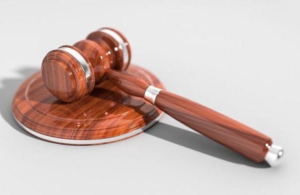 Активист потребовал через суд отменить выборы вМО «Семеновский»