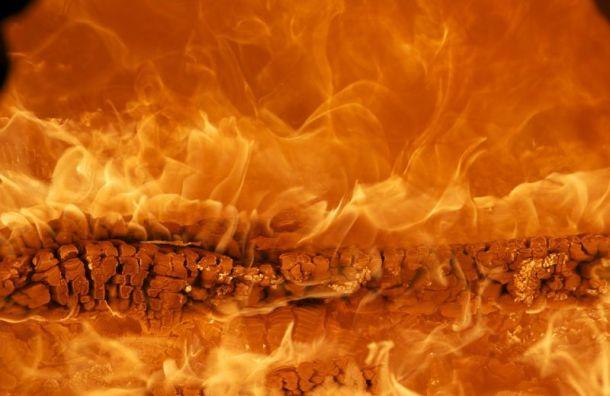 Крупный пожар произошел надаче вЛенобласти