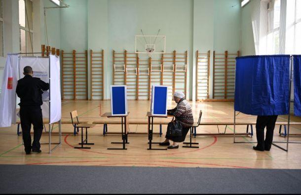 Памфилова: подводить итоги выборов в Петербурге рано