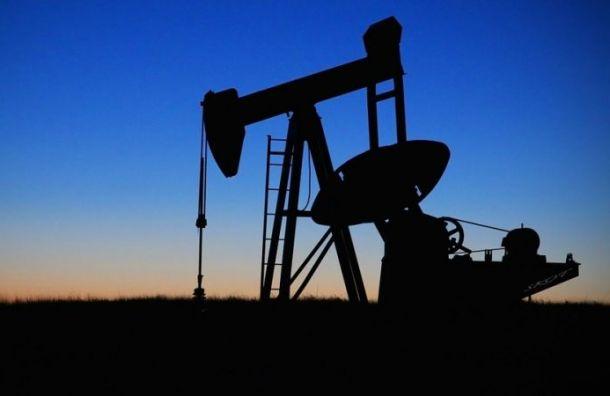 Цены нанефть взлетели на19%