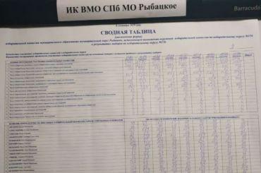 Кандидаты вМО «Рыбацкое» рассказали оворовстве голосов