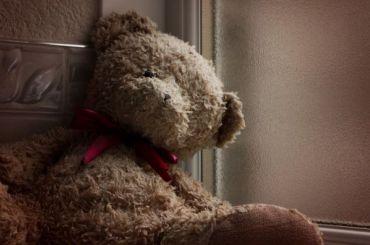 Пожилой житель Ленобласти изнасиловал 8-летнюю девочку