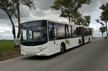 Смольный запустит автобусный маршрут из Колпино до метро «Шушары»