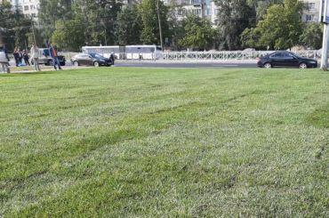 Рядом сновыми станциями Фрунзенского радиуса настелили газоны