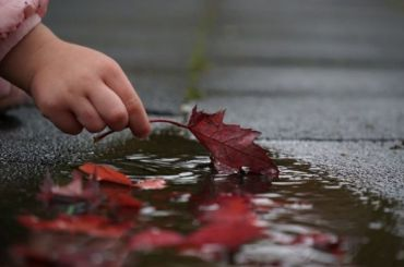 Циклон принесет Петербургу дожди инебольшое потепление