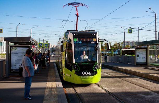 Два новых маршрута «Чижика» запустили вКрасногвардейском районе