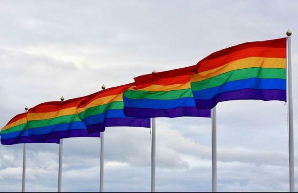 Эстонские студенты будут изучать историю ЛГБТ-сообщества