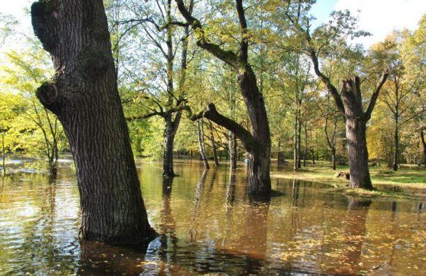 Парк «Дубки» затопило из-за шторма изакрытой дамбы