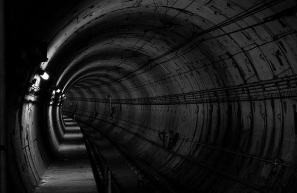 Встроительство метро доПулкова могут вложить 140 млрд рублей