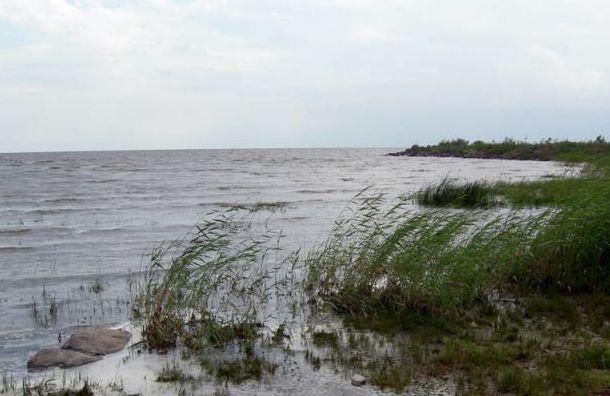 НаЧудском озере отыскали фундамент церквиXV века