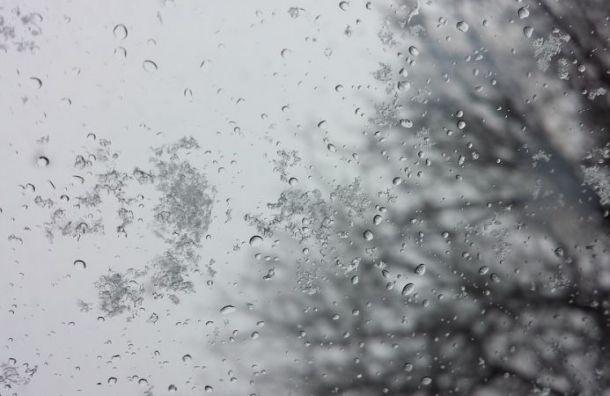 Дождь соснегом пообещали петербуржцам 8октября