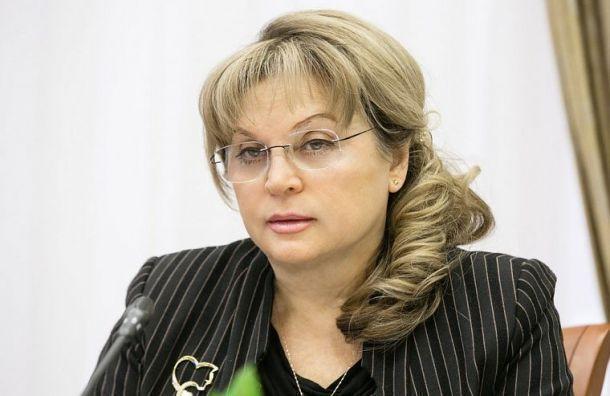 Памфилова пожаловалась Путину намуниципальные выборы вПетербурге