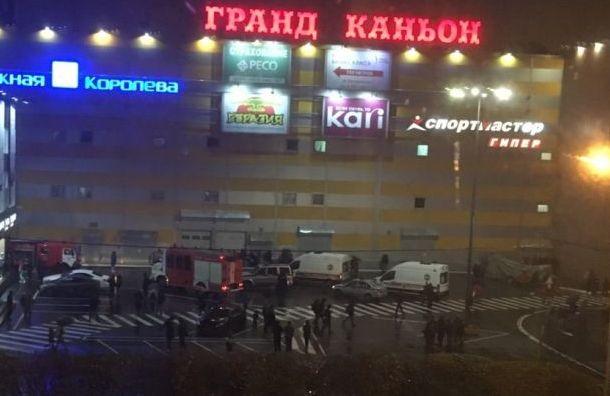 Торговый центр наокраине Петербурга потушили