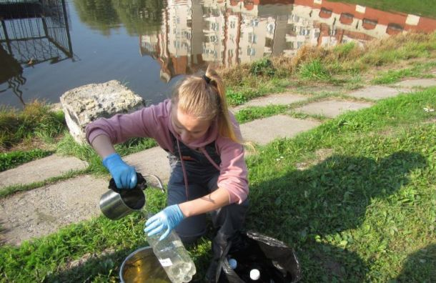 Экологи: состояние реки Новой намного улучшилось