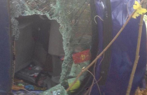 Четыре пассажира автобуса изТаллина пострадали вДТП вЛенобласти