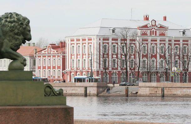 Власти согласовали митинг взащиту СПбГУ