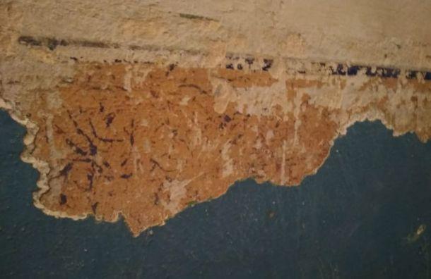 Дореволюционную трафаретную роспись нашли в доме на 3-й Советской